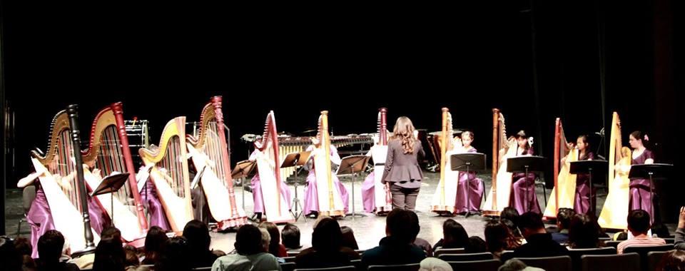 Harp Ensemble Concert_1_25_15
